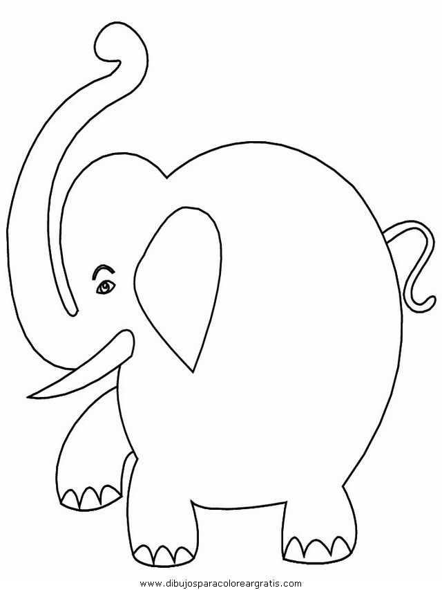 animales/elefantes/elefantes_05.JPG