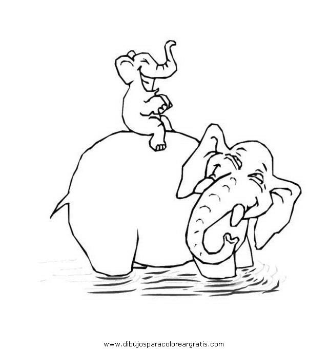 animales/elefantes/elefantes_12.JPG
