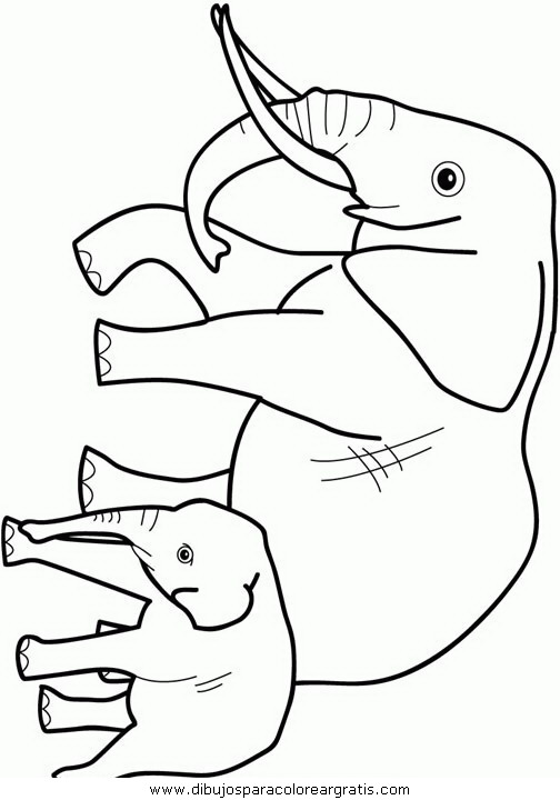 animales/elefantes/elefantes_17.JPG