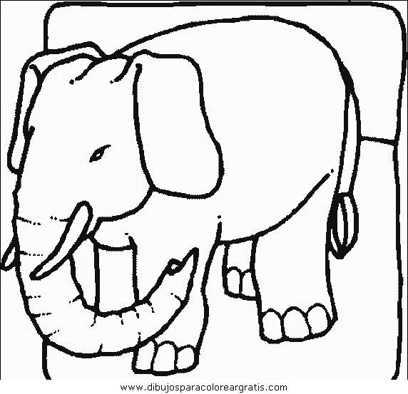 animales/elefantes/elefantes_22.JPG