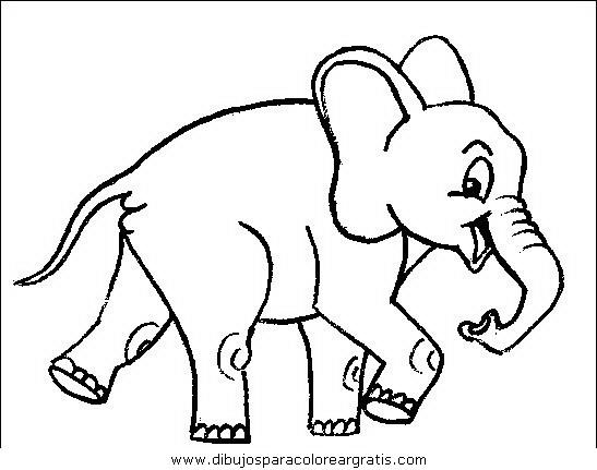 animales/elefantes/elefantes_31.JPG