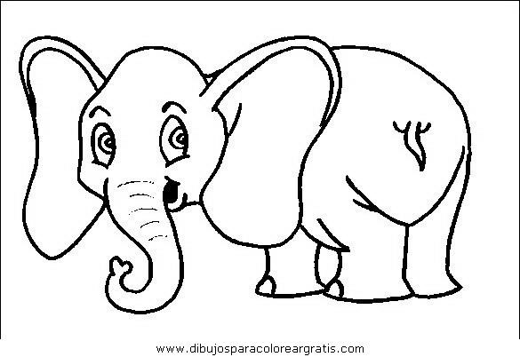 animales/elefantes/elefantes_32.JPG