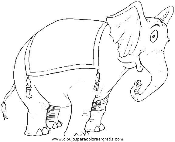 animales/elefantes/elefantes_54.JPG