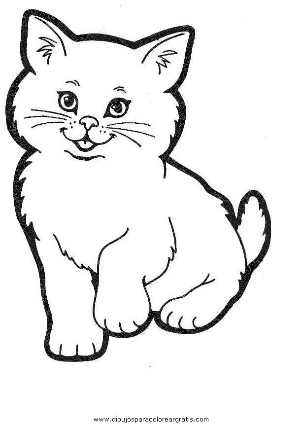 animales/gatos/gatos_012.JPG