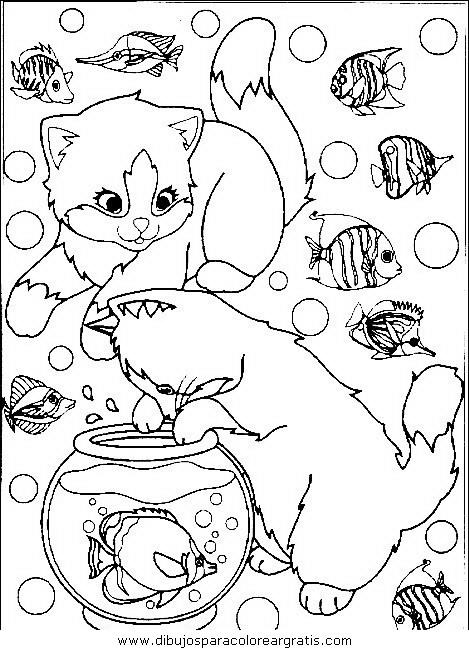 animales/gatos/gatos_026.JPG