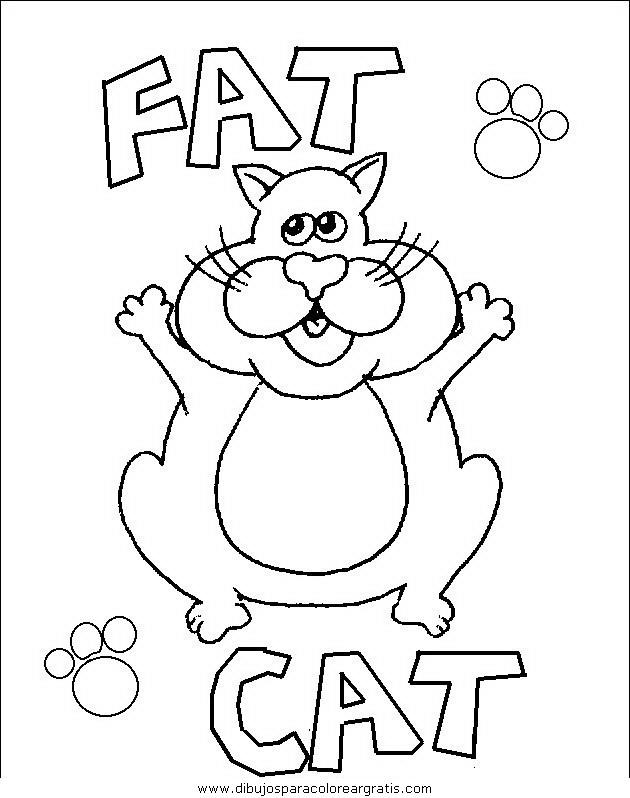 animales/gatos/gatos_046.JPG