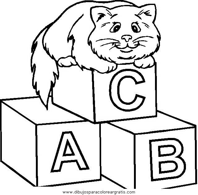 animales/gatos/gatos_050.JPG