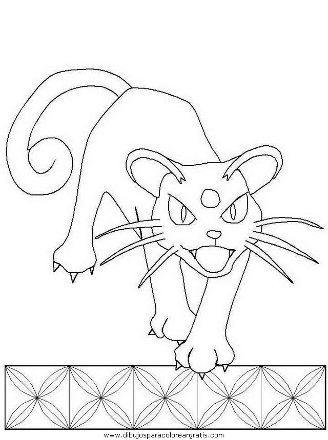 animales/gatos/gatos_051.JPG