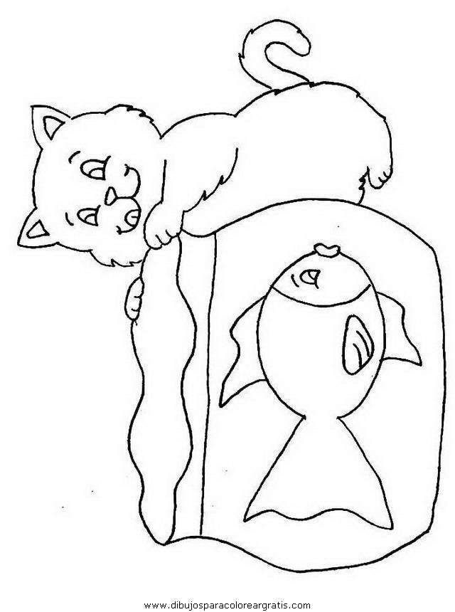 animales/gatos/gatos_055.JPG