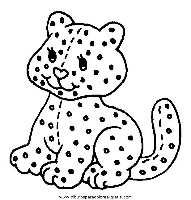 animales/gatos/gatos_057.JPG