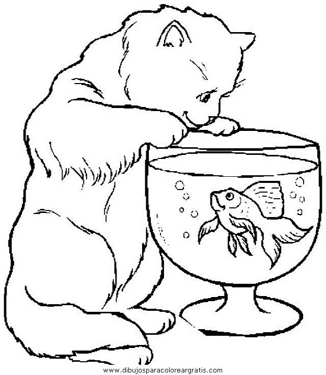 animales/gatos/gatos_060.JPG