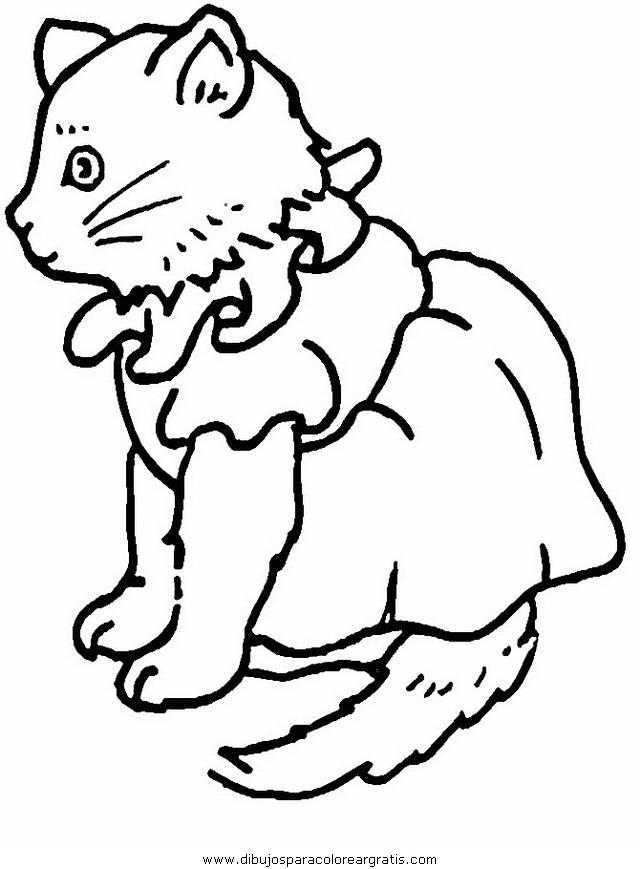 animales/gatos/gatos_074.JPG