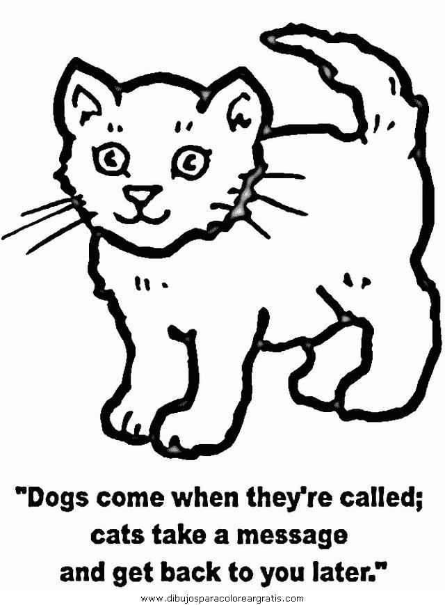 animales/gatos/gatos_076.JPG