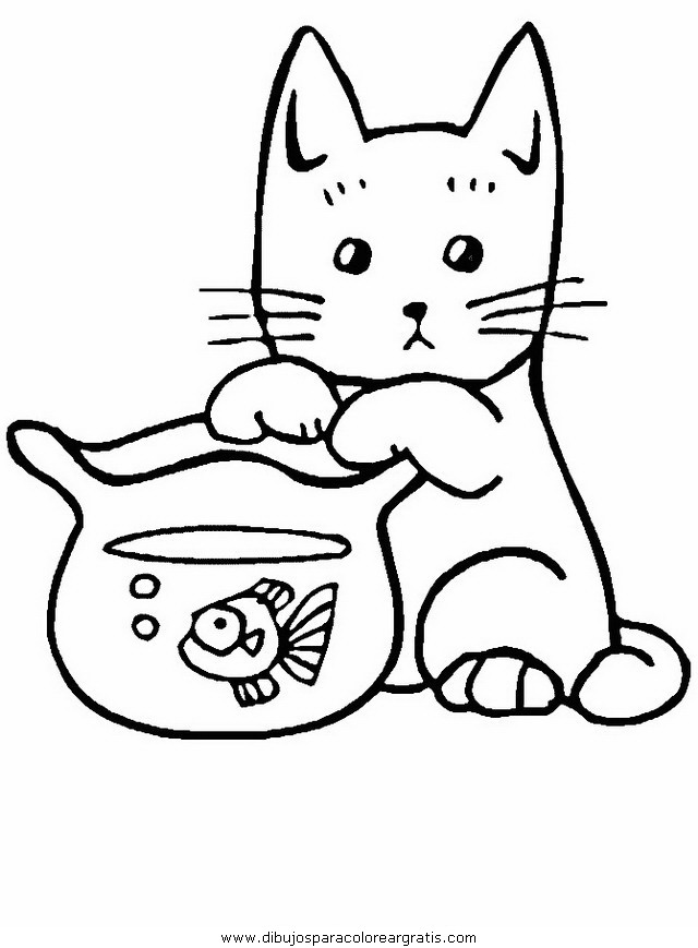 animales/gatos/gatos_079.JPG