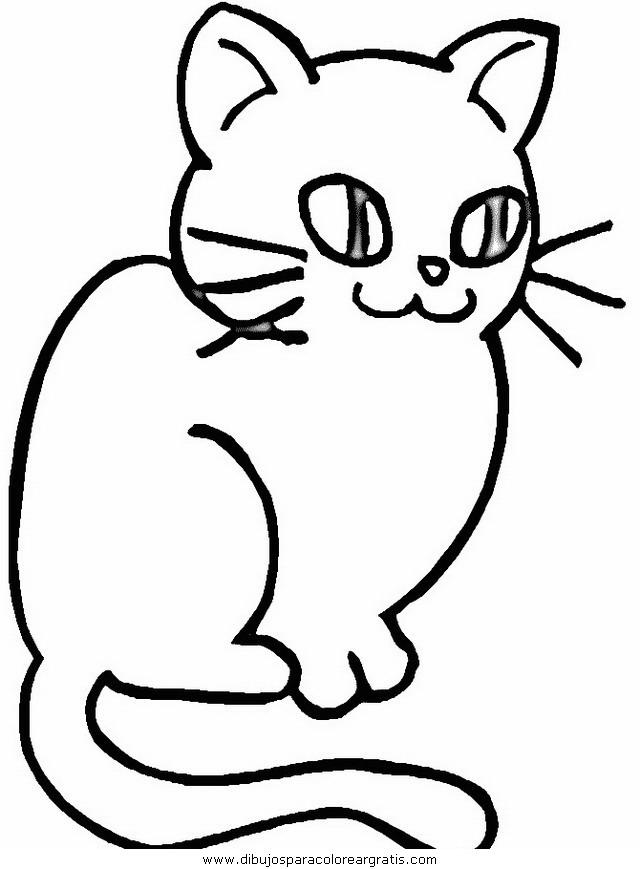 animales/gatos/gatos_085.JPG