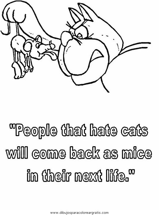 animales/gatos/gatos_090.JPG