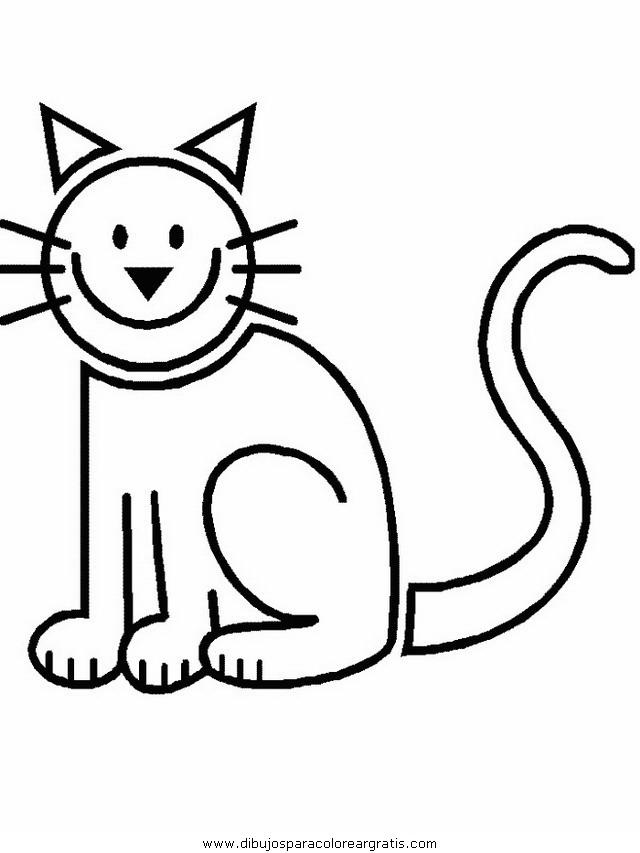 animales/gatos/gatos_093.JPG