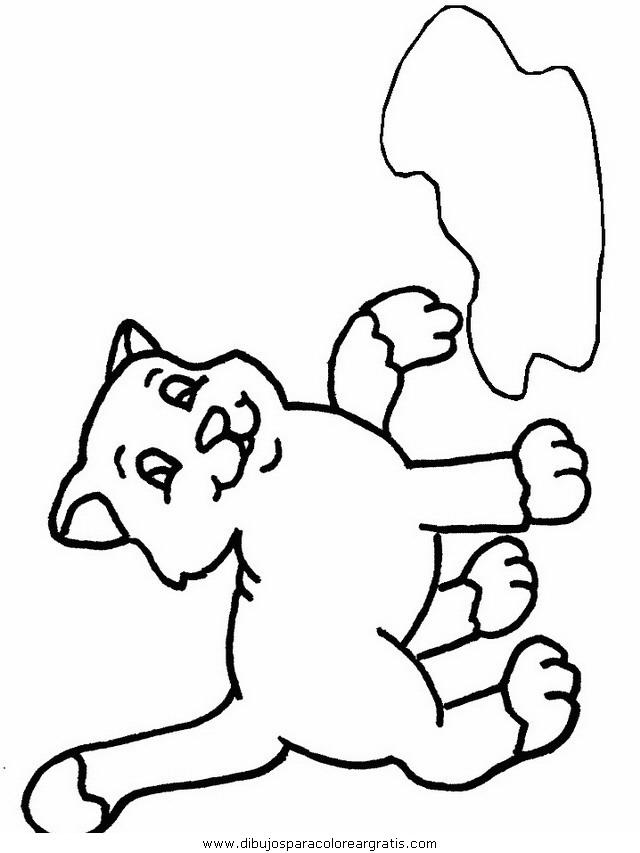 animales/gatos/gatos_096.JPG