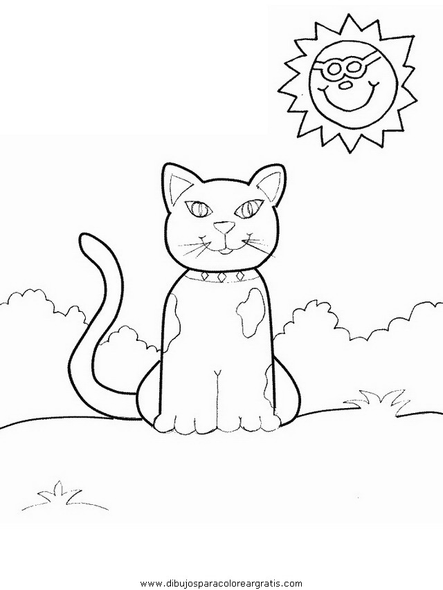 animales/gatos/gatos_101.JPG