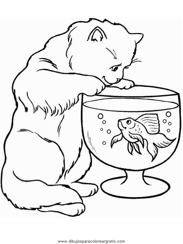 animales/gatos/gatos_102.JPG