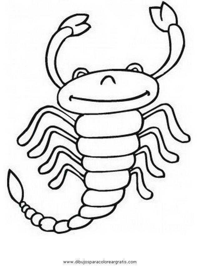 animales/insectos/alacran_3.JPG