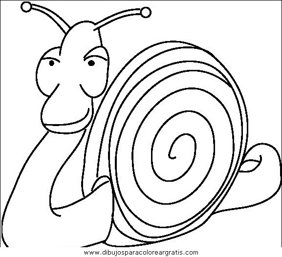 animales/insectos/insectos_013.JPG