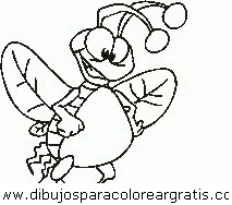 animales/insectos/insectos_097.JPG
