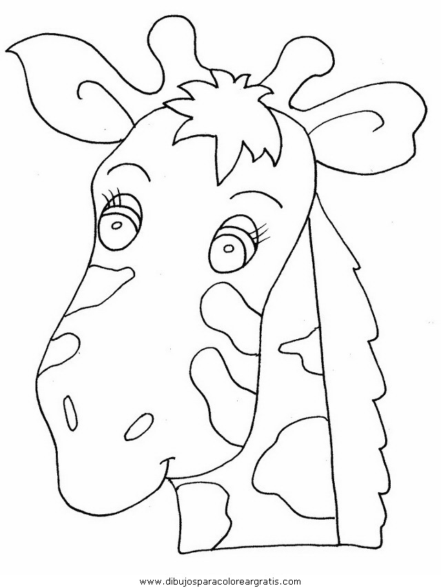 animales/jirafas/jirafas_12.JPG