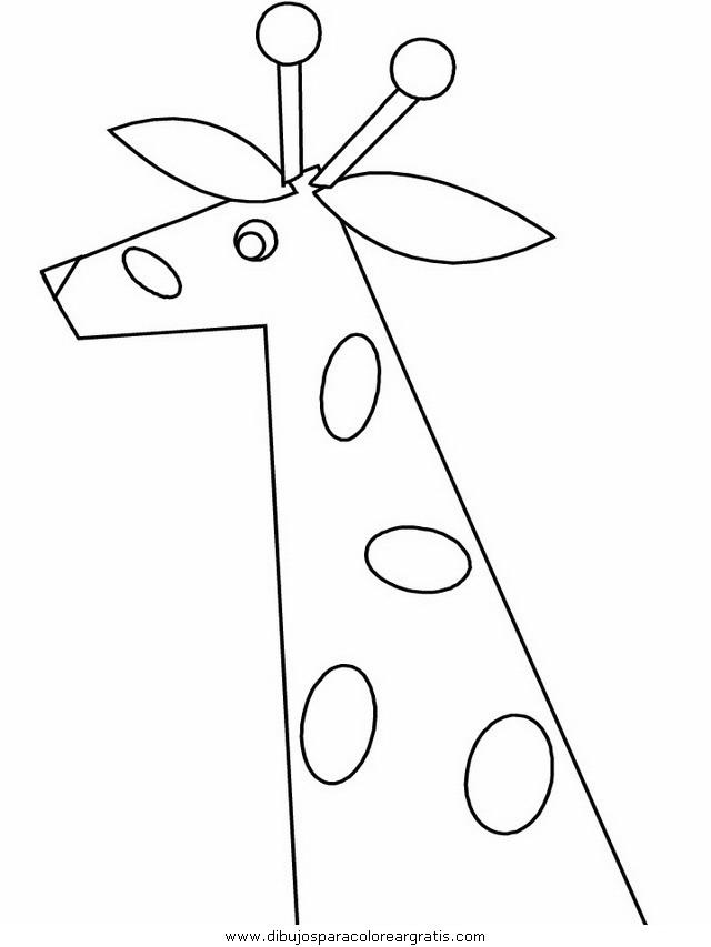 animales/jirafas/jirafas_14.JPG