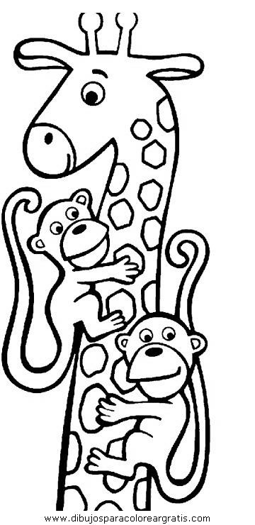 animales/jirafas/jirafas_31.JPG