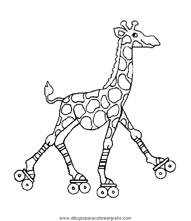 animales/jirafas/jirafas_36.JPG