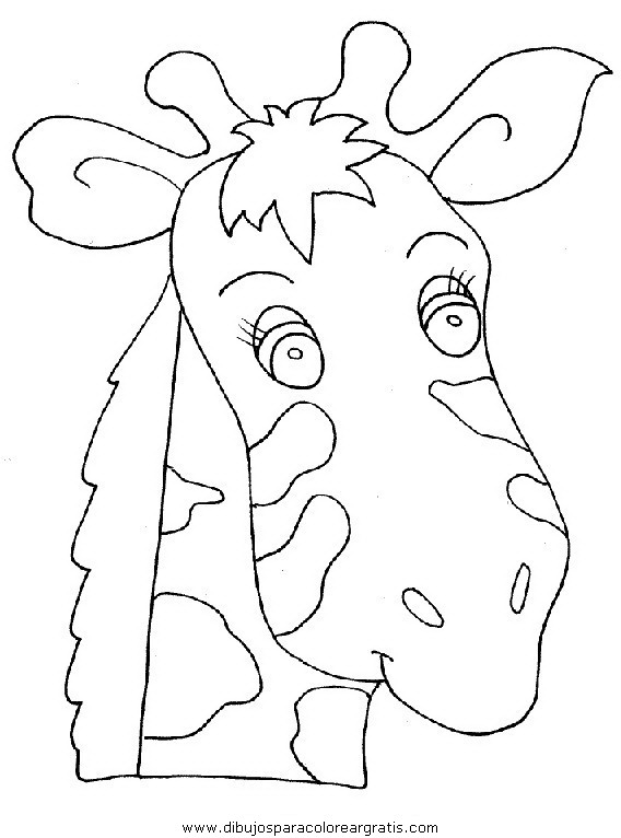 animales/jirafas/jirafas_39.JPG