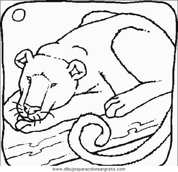 animales/leones/leones_02.JPG