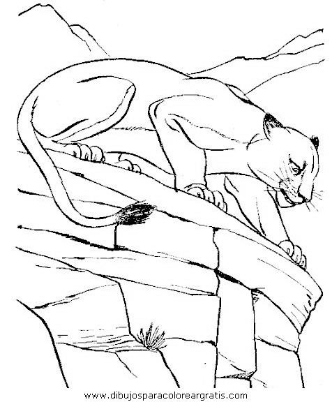 animales/leones/leones_18.JPG