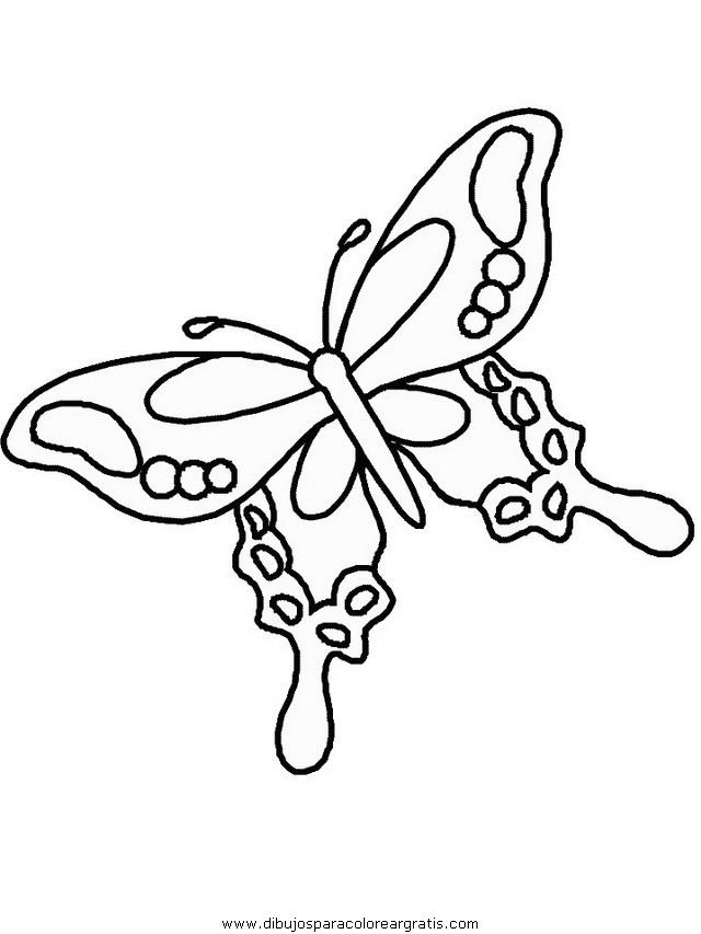 animales/mariposas/mariposas_003.JPG