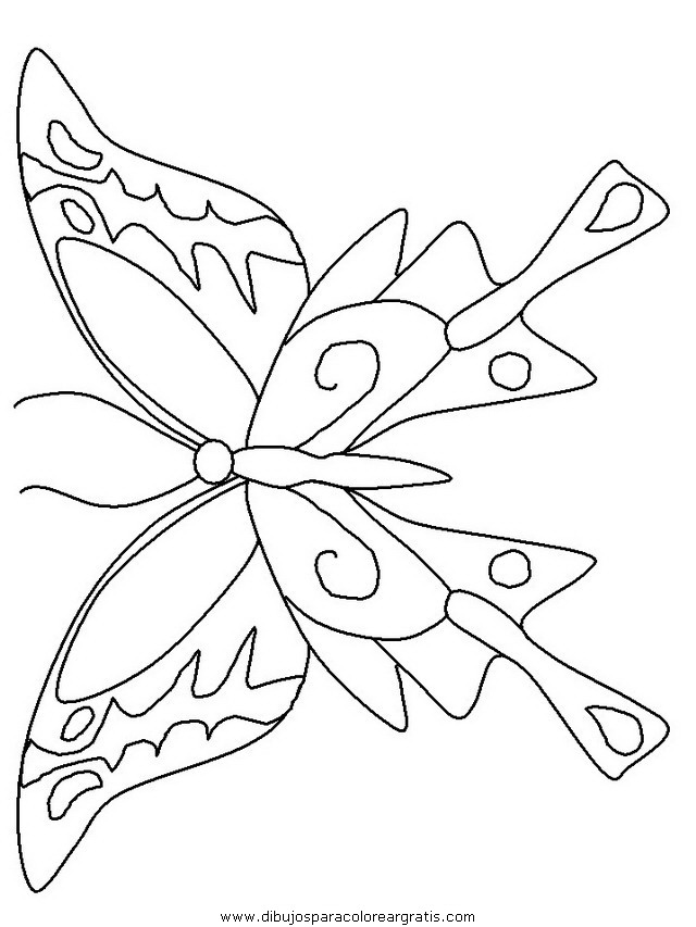 animales/mariposas/mariposas_025.JPG