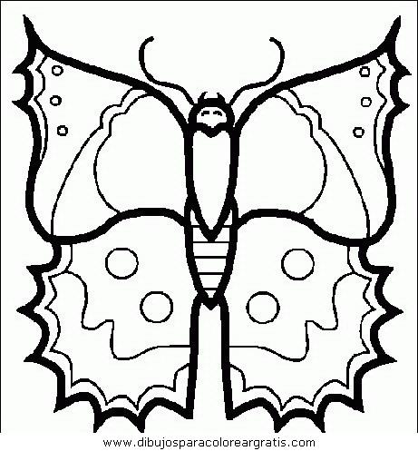 animales/mariposas/mariposas_032.JPG