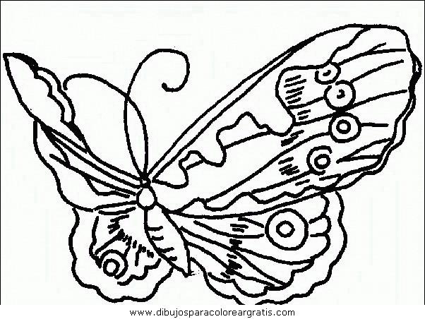 animales/mariposas/mariposas_041.JPG