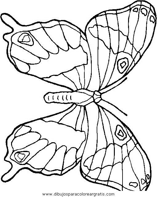 animales/mariposas/mariposas_049.JPG