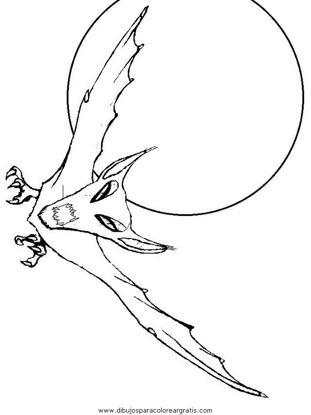 animales/murcielagos/murcielagos_02.JPG