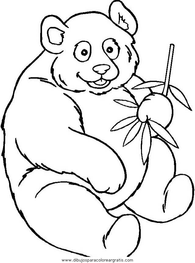 animales/osos/osos_001.JPG