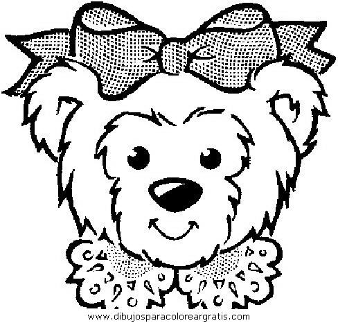 animales/osos/osos_007.JPG