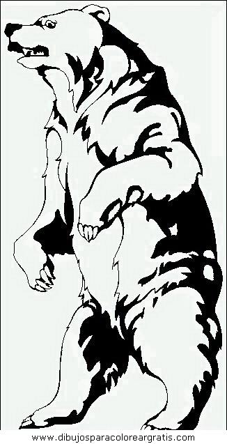 animales/osos/osos_025.JPG