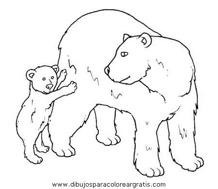 animales/osos/osos_076.JPG