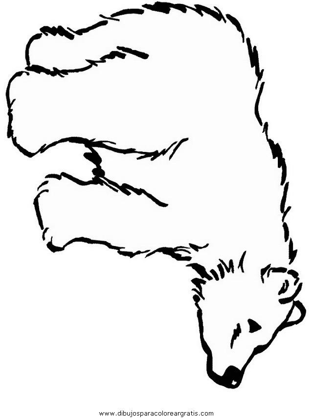 animales/osos/osos_094.JPG