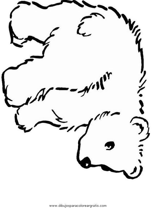 animales/osos/osos_095.JPG