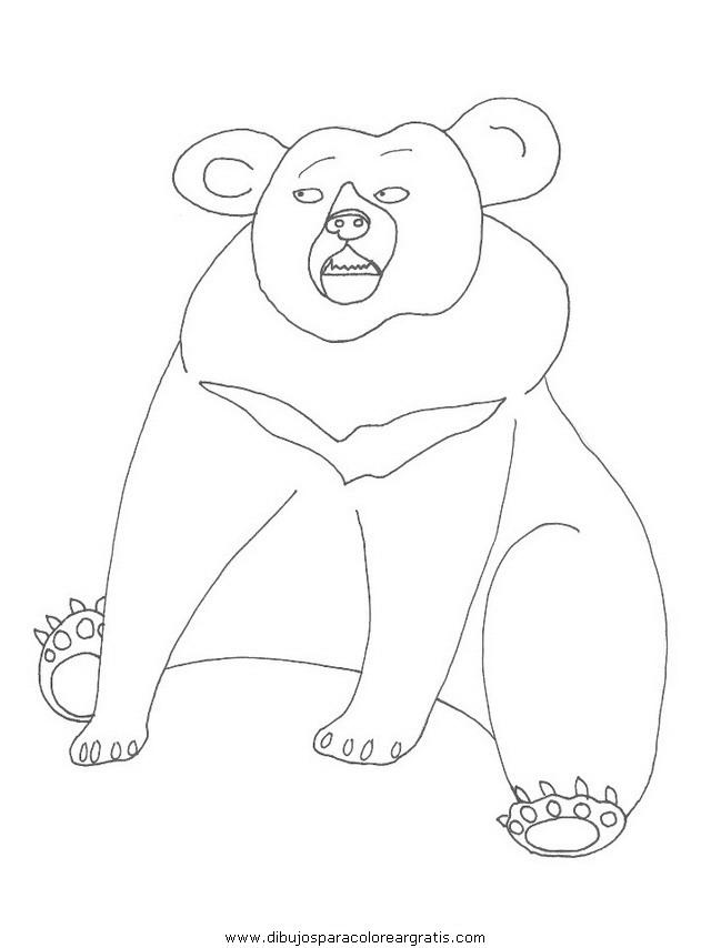 animales/osos/osos_100.JPG
