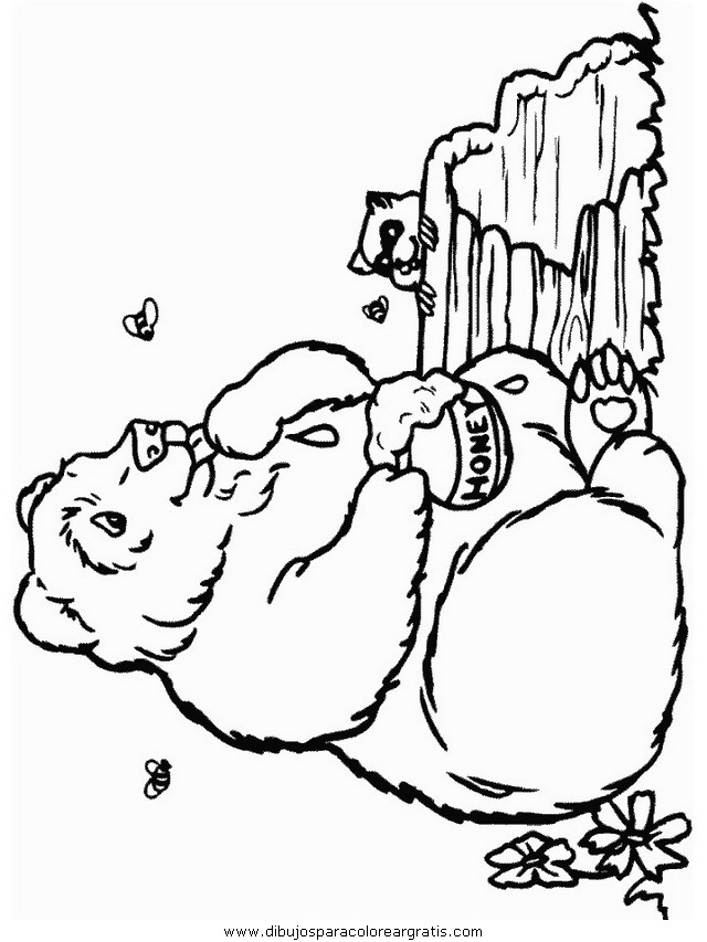 animales/osos/osos_106.JPG