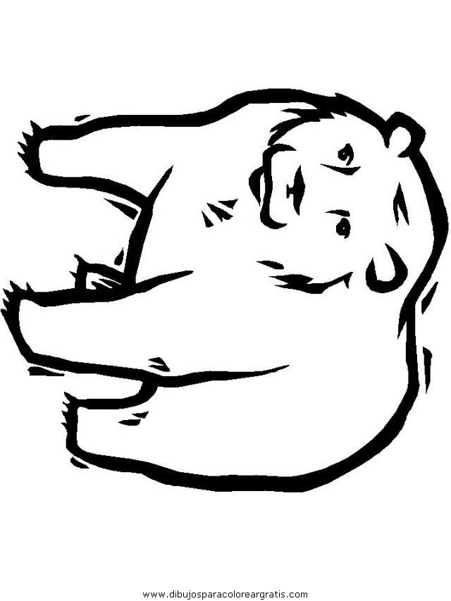 animales/osos/osos_109.JPG
