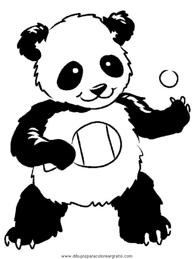 animales/osos/osos_111.JPG